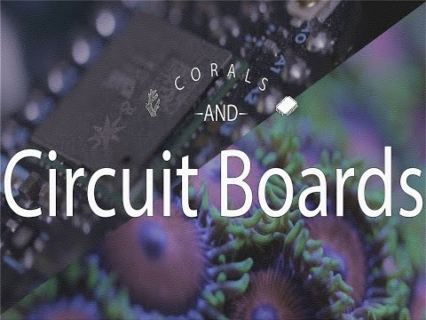 Corals And Circuit Boards - A Mini-Documentary