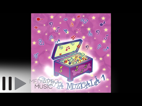 Cutiuta Muzicala 1 - Alin Oprea - Motanas - Motanel