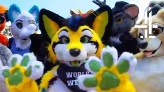 Being a Furry for a Day