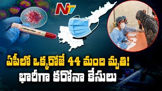 2,432 fresh positive cases reported in AP, 44 succumb to v..