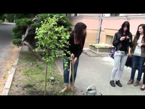 Obchodná akadémia Levice Sadenie stromov DeforestACTION.mp4