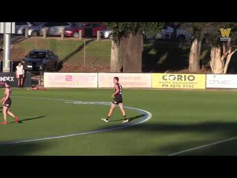 Round 14 Highlights: Werribee vs Collingwood