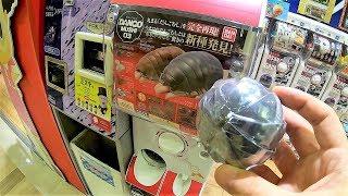 New Huge Pill Bugs Gacha Weird Capsule Toy