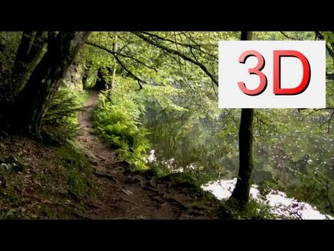 3D Video: River & Forest Relaxation #10