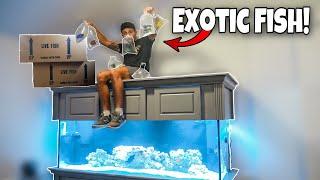 BUYING EXOTIC FISH For My AQUARIUM!!