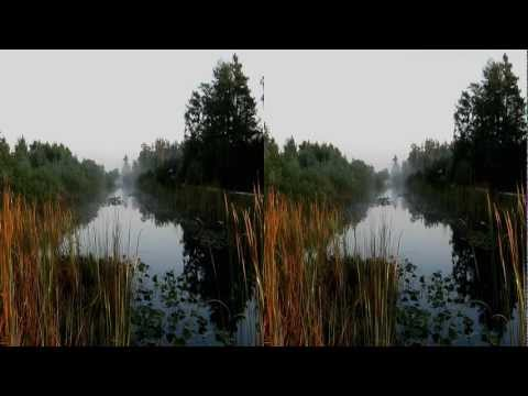 Loxahatchee (3D/Stereo)