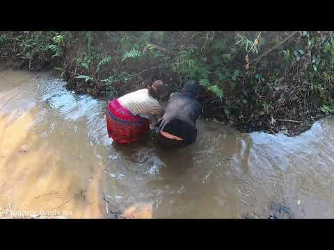 Primitive family: Slap water catch fish