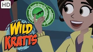 Wild Kratts - Top Season 1 Moments (2 Hours!) | Kids Videos