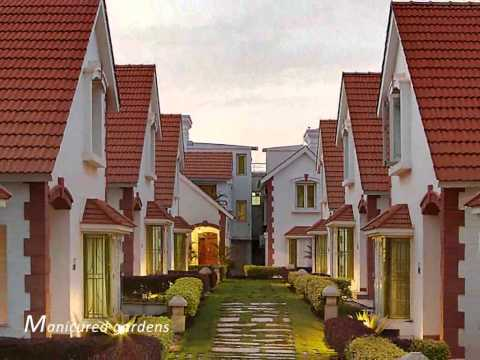 MIMS Builders Corporate Brief.flv