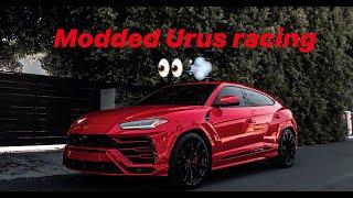 Lamborghini Urus vs Daytona hellcat Charger vs Shelby GT500
