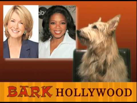 Bark Hollywood - Episode 12