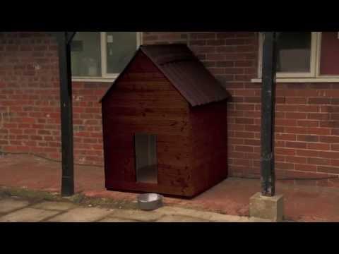 RYOBI - Crea una caseta para tu perro