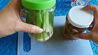 👏Cách Làm Tinh Dầu Sả Trừ Muỗi( Côn Trùng)/ Lemongrasss Esssential Oil