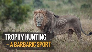 Trophy Hunting - A Barbaric Sport