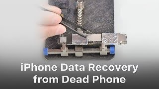 iPhone Data Recovery from Dead Logic Board / Phone