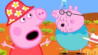 Peppa Pig Full Episodes - The Outback - Cartoons for Children
