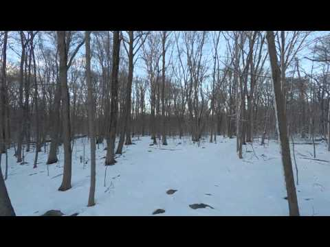 Greenwich/Stamford, CT land auction video