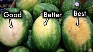 How To Pick The Sweetest Watermelon Every Single Time