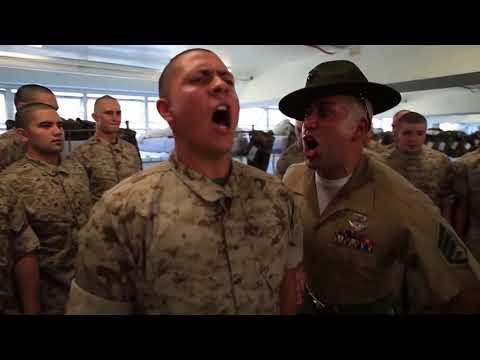 Funniest Drill Sergeants in One Video