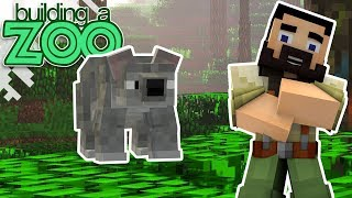 I'm Building A Zoo In Minecraft! - Koalas And Contests! - EP14
