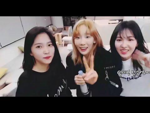 팬들과 케미 터지는 프로반응러 태연 (ft.김다정)