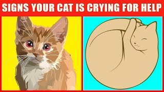 19 Warning Signs That Your Cat Is Begging For Help