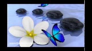 Sound of Silence | Serenity & Relaxing Spa Music with Soothing Nature Sounds