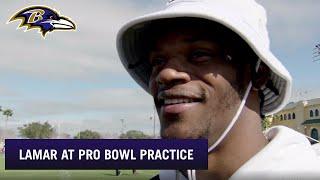 Lamar Jackson Is Star Gazing at the Pro Bowl | Baltimore Ravens