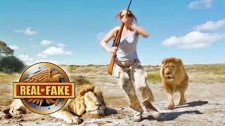 Lion Takes Revenge on Trophy Hunter- real or fake?