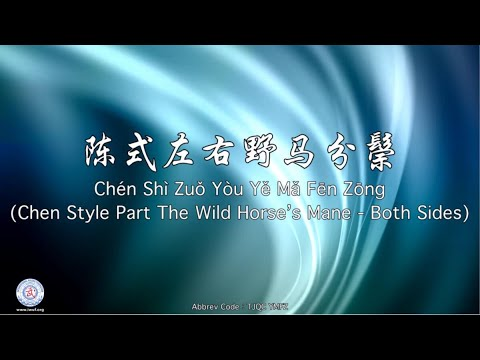 Chén Shì Zuǒ Yòu Yě Mǎ Fēn Zōng TJQC YMFZ (Chen Style Part the Wild Horse's Mane)