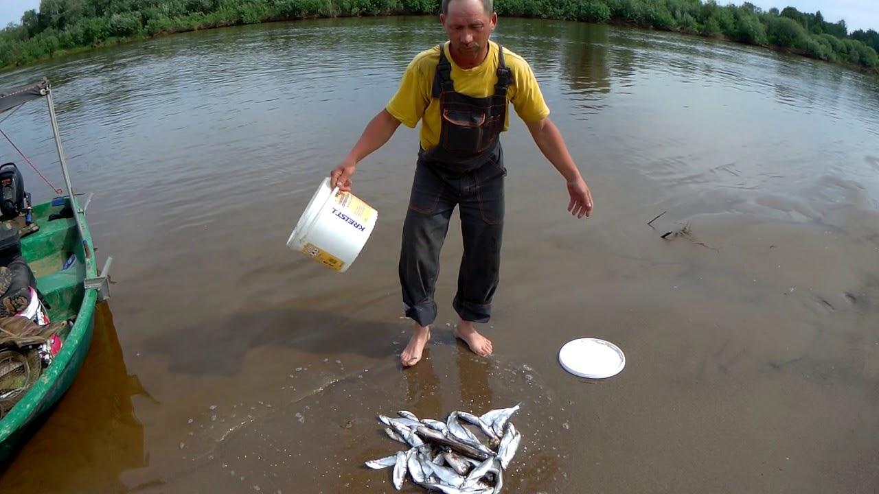 Рыбалка на вятке и не только 2019