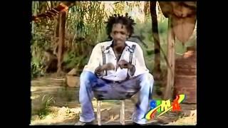 """Ertibu Agegnehu - Yewelo Lij Nana """"የወሎ ልጅ ናና"""" (Amharic)"""