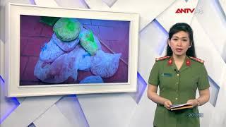 Tin nhanh 20h hôm nay   Tin tức Việt Nam 24h   Tin nóng an ninh mới nhất ngày 10 04 2019   ANTV