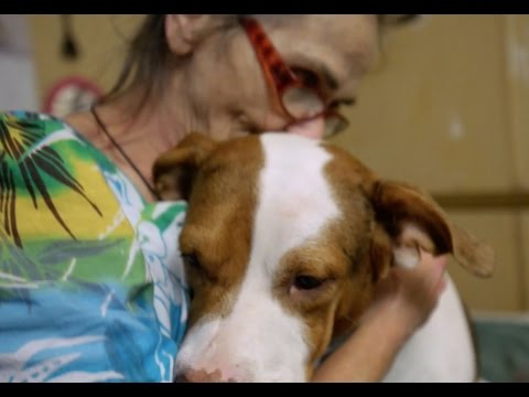Donna Sarner's illness makes it difficult to care for her animals.  Cornerstone Hospice and Pet Peace of Mind have stepped in to help.