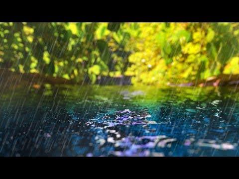 Rain Sounds + Gentle Stream | Sleep, Study, Focus | White Noise 10 Hours