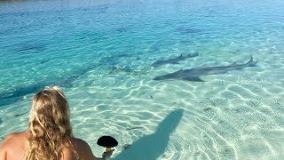 She Was FEEDING SHARKS!!!