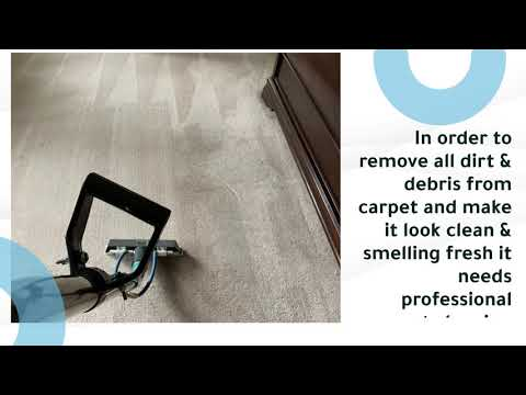 Professional Hillsboro Carpet Cleaning Services