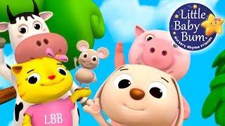 Nursery Rhyme Videos! | New! | Compilation from LittleBabyBum! | Live Stream!