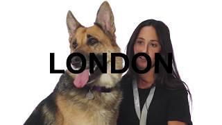 Adopt London at NKLA