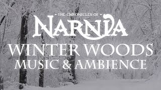 Chronicles of Narnia | Winter Woods Music & Ambience - Relaxing Music with Sounds of Snow