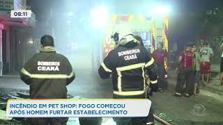 Incêndio em Pet Shop: fogo começou após homem furtar estabelecimento