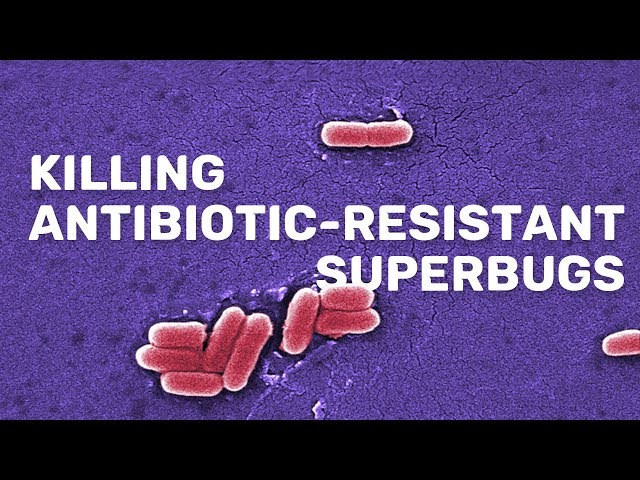New compound kills antibiotic resistant superbugs