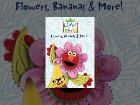 Elmos World Flowers Plants Trees | Car Interior Design