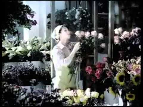 Suzuki - the flower