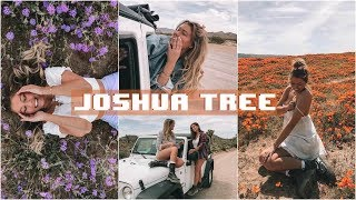 Travel Vlog // Joshua Tree, CA!