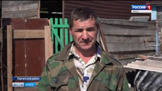 В селе Верблюжье официально сняли  карантин по африканской чуме свиней
