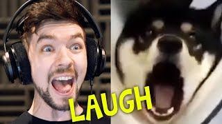 CHILD GETS SCARRED FOR LIFE | Jacksepticeye's Funniest Home Videos