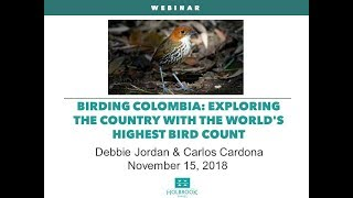 Birding Colombia: Exploring the country with the world's highest bird count