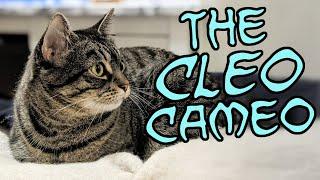 The Cleo Cameo