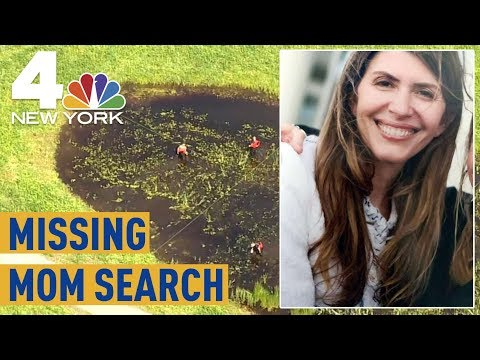 Jennifer Dulos Case: Search For Missing Connecticut Mom Continues | NBC New York